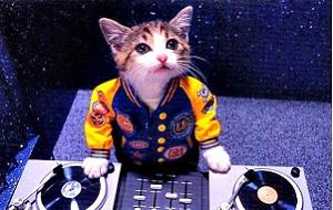 Como DJs pouco conhecidos vão parar em grandes festivais?